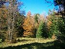 Čabar, jesen
